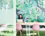 15 dicas para conseguires o teu emprego de sonho