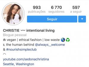 Exemplo Caracteres especiais Bio do Instagram
